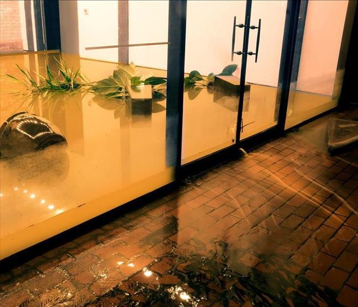 floodwaters, muddy, items floating in a commercial building entrance
