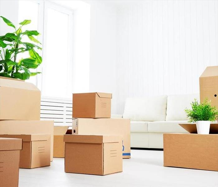 Boxes of items in a living room, with a white couch and plant.