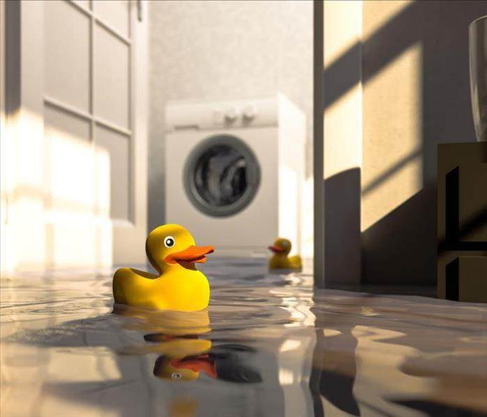 Yellow rubber ducks floating in a flooded basement