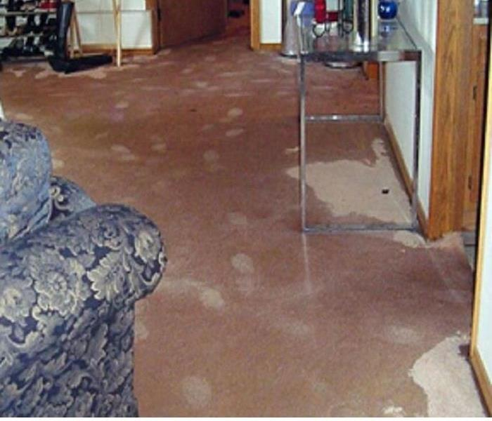 Water Damage Water Damage tips for Monee