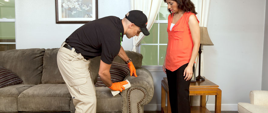 Chicago Heights, IL carpet upholstery cleaning